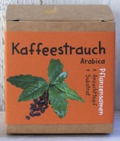 Kaffeestrauch-erfinderladen