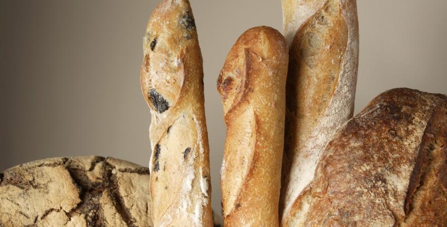 bread-brot-innovation