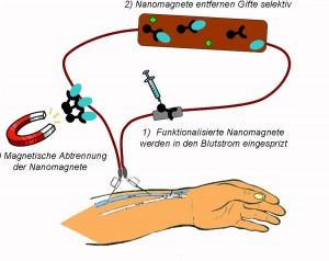 nanomagnete