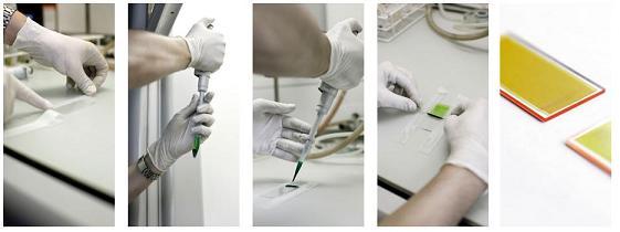 Beispiel einer ZeoFRET®-Beschichtung auf einem Substrat